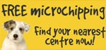 Free dog microchip from The Dogs Trust