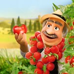 Free Tomato seeds from Dolmio
