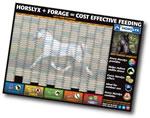 Horslyx 2013 Wall Planner
