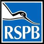 RSPB Big Wild Sleepout