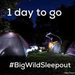 Big Wild Sleepout pack